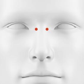 piercings gesicht